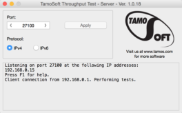 Throughput Test - Screenshot 3